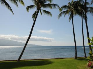 Best Oceanfront, LAULOA 111, Remodeled, HDTV, WIFI - Maalaea vacation rentals