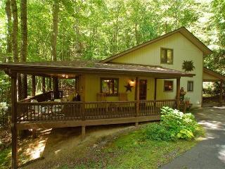CREEK - WOODS - HOT TUB & GREAT REVIEWS ! - CNW #1 - Maggie Valley vacation rentals