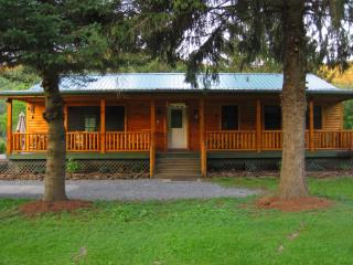 The Red House River Cabin - Deposit vacation rentals