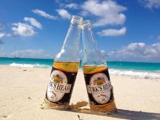 Elegant Oceanview Suite -50% off resort rates! - Providenciales vacation rentals