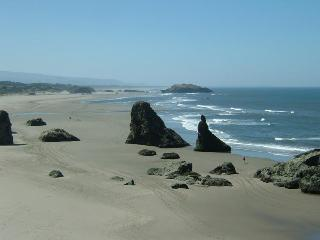 Steps to Best Beach,No Stairs!,Couples,May 18-25!! - Bandon vacation rentals