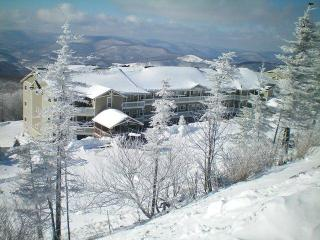 Village condo 3br/2ba- Summer $150 night/$800 week - Snowshoe vacation rentals