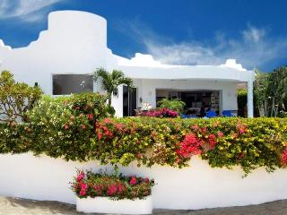 Beautiful Villa Paloma Blanca in San Jose Del Cabo - San Jose Del Cabo vacation rentals
