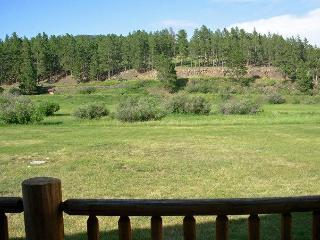 Black Hills Vacation Rental Cabins - Hill City SD - South Dakota vacation rentals