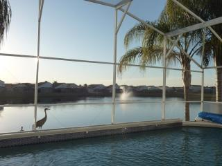 Lake View Villa Orlando - Disney vacation rentals