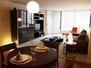 Union Square/Downtown large + modern apartment - San Francisco vacation rentals