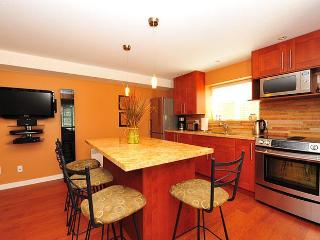 Luxurious lrg suite next to lakes, trails & nature - Coquitlam vacation rentals