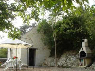 Les Cathelinettes - Chinon vacation rentals