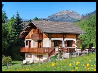 4 STARS - DREAM CHALET in La Clusaz area - HOT TUB - Rhone-Alpes vacation rentals