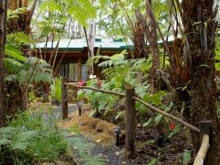 Enchanted Rainforest Cottages, near park entrance - Volcano vacation rentals