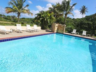 The Villa at Casa Ladera: Pool, steps to the beach - Isla de Vieques vacation rentals