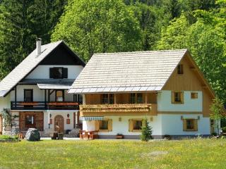 Alpik Apartment at Lake Bohinj - Zgornje Gorje vacation rentals