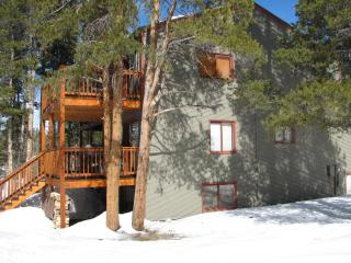 3BR/3BA Breckenridge Townhome on the Bus Route! - Breckenridge vacation rentals