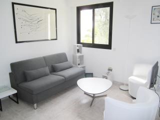 Nice 1 Bedroom Flat with Sea View, Garden, AC, Parking - Nice vacation rentals