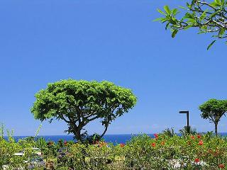 Cliffs 5106: Ground floor ocean view condo, resort amenities, great rate. - Princeville vacation rentals