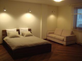 Szucha Apartment - Warsaw vacation rentals