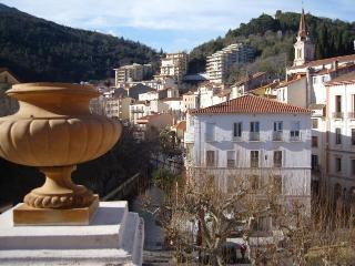 Superb Apartment in the heart of Amelie les Bains - Prades vacation rentals