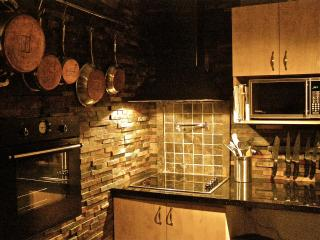 1 bedroom modern condo 10 min to downtown Ottawa - Val-des-Monts vacation rentals