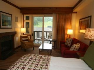 Studio 361 at Stowe Mountain Lodge - Stowe Area vacation rentals