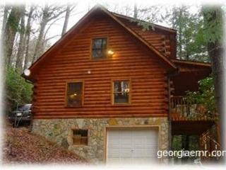 Skip's-Is a charming, log cabin in the heart of the mountains @ Vogel Park! - Blairsville vacation rentals
