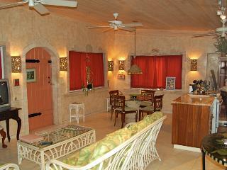 Amore Loft Apartment - Cruz Bay vacation rentals