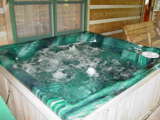 Private-Boone 15 min/Hot Tub/WiFi/Hiking/Fishing - Boone vacation rentals