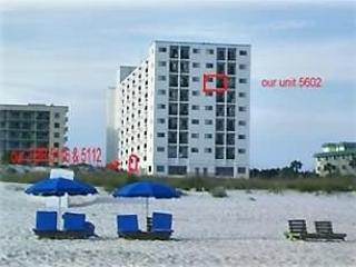 SPECIAL-$295  9/1-9/4 #5105 gulfview studio - Gulf Shores vacation rentals