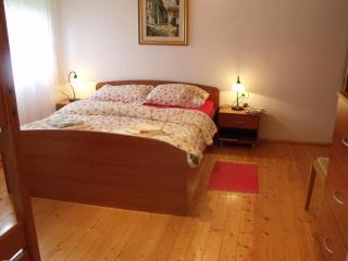 Appartment Dante at Skvor holidayhouse Robidisce - Kobarid vacation rentals