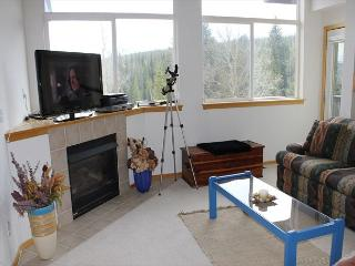 FP121D Fantastic Townhome w/ Wifi, Pet Friendly, King Bed, Private Hot Tub - Silverthorne vacation rentals