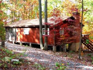 Bonnie Brae Getaway Cabin - Private & Secluded! - Basye vacation rentals