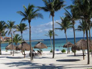 Casa Kokai, VDM C 105, Beachfront, Best Location! - Puerto Aventuras vacation rentals