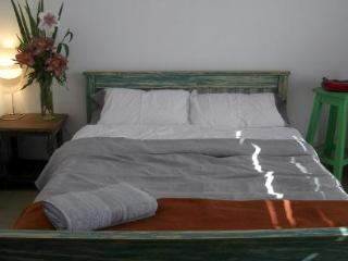 2 bedrooms with private terraces Palermo Soho - Buenos Aires vacation rentals