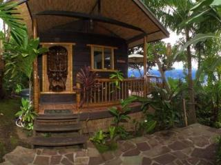 ROMANTIC HONEYMOON HIDEAWAY - CUTE JUNGLE COTTAGE! - Honaunau vacation rentals
