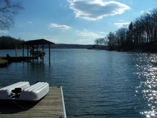 Rustic Cottage at Smith Mountain Lake - Goodview vacation rentals