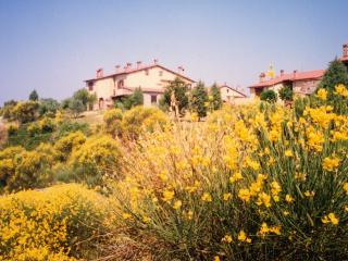 Apartment in the heart of Umbria, Orvieto-Ficulle - Umbria vacation rentals
