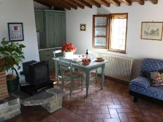 Charming apartment in a small Chianti Farmhouse - Chianti vacation rentals