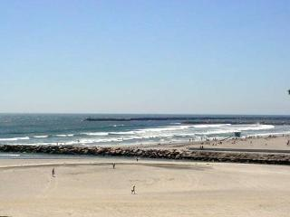Happy Whale Oceanside San Diego One Bedroom Condo - Oceanside vacation rentals