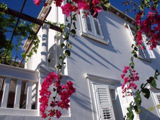Villa Antipodes - Dubrovnik vacation rentals
