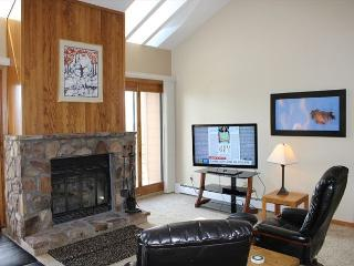 BV402BB Great Condo w/ Elevator, King Bed, Wifi, Fireplace, Clubhouse - Silverthorne vacation rentals