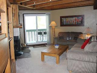 TH201F Affordable Condo w/Wifi, Clubhouse, Mountain Views, Fireplace - Silverthorne vacation rentals