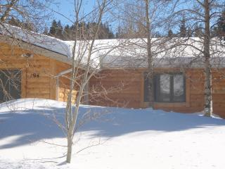 Great home Colorado,Ski  Private  Hot tub - Dillon vacation rentals
