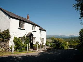 Primrose Cottage - Llanidloes vacation rentals