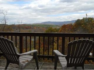 Shenandoah Valley Getaway with Hot Tub - Fort Valley vacation rentals