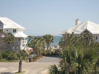 Last August Week: 22-29-$1190! Booking September! - Saint George Island vacation rentals