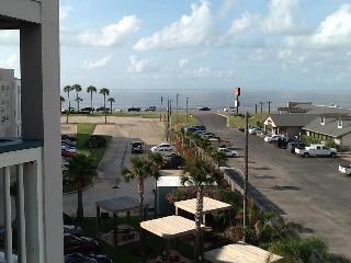STRESS FREE ZONE  Galveston, TX rental - Galveston vacation rentals