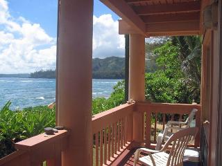 Step out the door and onto the beach!  Romantic upgraded studio.  Views! - Wainiha vacation rentals