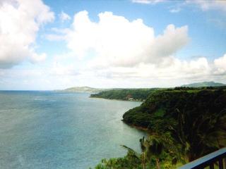 Hale Luna Koa: Kauai top floor ocean bluff condo - Princeville vacation rentals