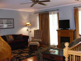CHARMING LAKE LURE, NC MOUNTAIN CONDO - Lake Lure vacation rentals