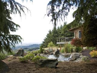 Vineyard Ridge - Best View in OR Wine Country - Yamhill vacation rentals