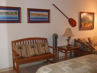 Beautiful, Clean, Well Decorated Oceanfront Condo - Kailua-Kona vacation rentals